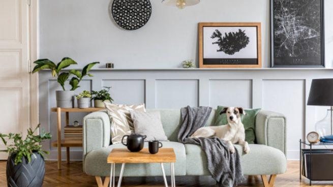 Decorar tu casa según tu signo zodiacal