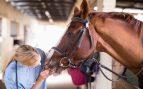 Buena salud en un caballo