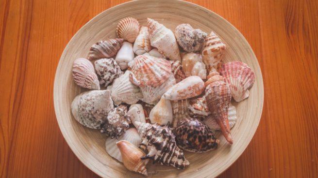 Cómo hacer un móvil de conchas marinas