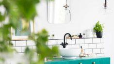Todos los pasos para renovar el baño en solo siete pasos