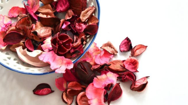 flores secas en 3 minutos
