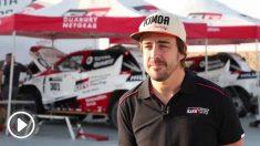 Fernando Alonso, en unas declaraciones a Toyota.