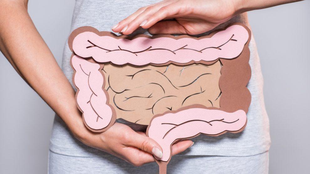 ¿En qué consiste el vólvulo intestinal?