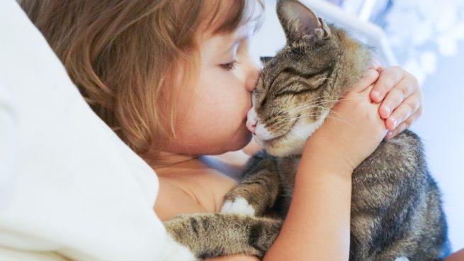 Gatos como terapia en el autismo