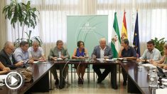 El consejero de Salud de Andalucía, Jesús Aguirre, en su comparecencia de esta mañana. (Ep)