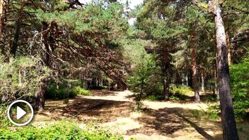 Zona aproximada donde los perros señalizaron un rastro de Blanca Fernández Ochoa