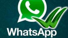Cómo hacer una copia de seguridad de toda la app WhatsApp