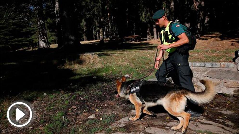 Agentes de la Guardia Civil trabajan en la búsqueda de la esquiadora Blanca Fernández Ochoa, desaparecida desde el pasado día 23, este miércols en la sierra de Madrid. Foto: EFE