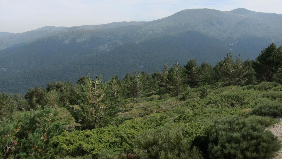 El Pico de La Peñota de la Sierra de Guadarrama. (Europa Press)