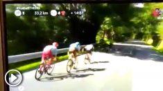 Un fragmento de la retransmisión de la Vuelta Ciclista en TVE.