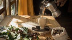 Pasos para conseguir que el café esté siempre perfecto