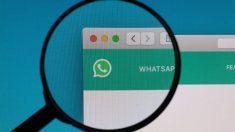 Cómo evitar que WhatsApp se haga con tus datos