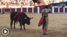 Mano a mano de Aguado y Morante .