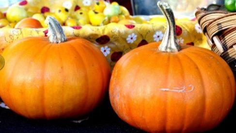 ¿Cuáles son los mejores alimentos de otoño?