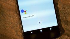 Descubre cómo hacer llamadas de WhatsApp con Google Assistant