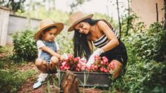 Todos los pasos para hacer jardinería con los niños