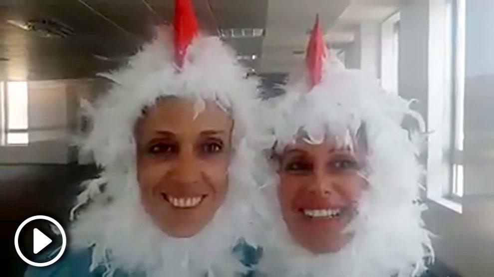 El video de las 'gallinas' que se ha hecho viral.