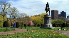 Boston se caracteriza por albergar una gran cantidad de centros educativos.