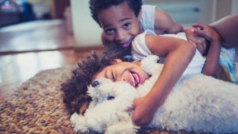 Cómo enseñar a los niños a cuidar a una mascota paso a paso