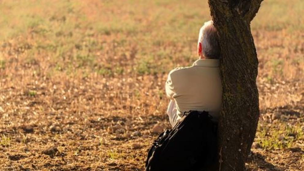 Principales causas de la soledad