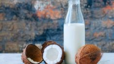 Cómo hacer leche de coco casera paso a paso