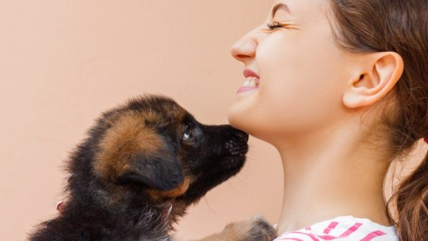 El hipo en tus cachorros