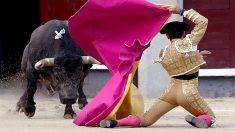 El diestro Sergio Serrano recibe a su primer astado durante el segundo y último desafío ganadero del mes de septiembre en Las Ventas (Efe)