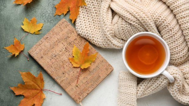 Cómo hacer una limpieza general para darle la bienvenida al otoño