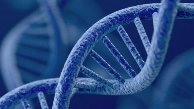 Qué es una enfermedad genética