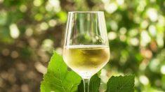 Curiosidades del vino blanco