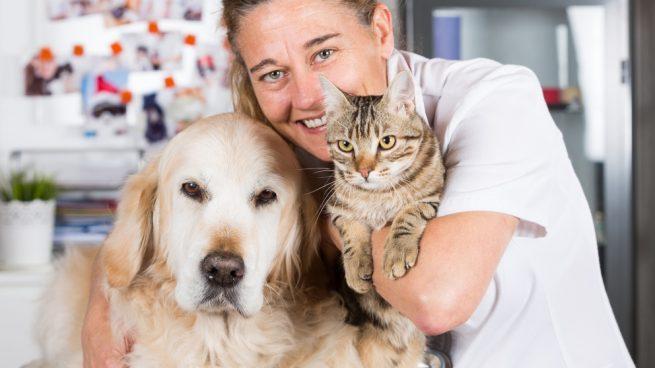 Cómo es la biopsia en perros y gatos
