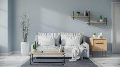 Guía para lavar una funda de sofá blanca de manera correcta