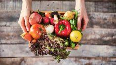 Veganos o vegetarianos: Distintos tipos de dieta
