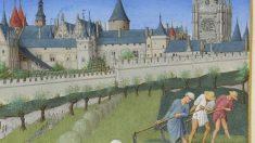 Descubre cómo eran las casas en la Edad Media