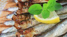 Receta de sardinas con salsa de albahaca