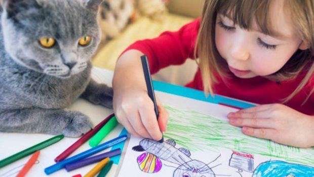 Cómo dibujar un gato realista
