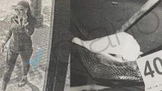 Relato fotográfico del crimen de Dana Leonte.