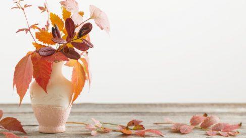 Pasos para decorar con hojas secas