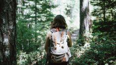 El senderismo es una de las mejores actividades para mantenerte en forma