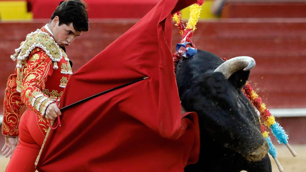 Toros en Valencia (Foto: EFE)