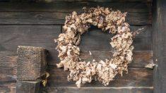 Aprende cómo hacer una corona de hojas secas