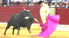 Enrique Ponce durante una de sus faenas este jueves en Zaragoza (Foto: EFE).