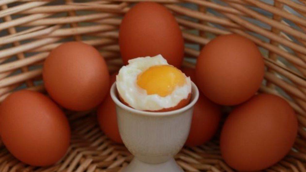 Día Mundial del Huevo, ¿Por qué se celebra este día?