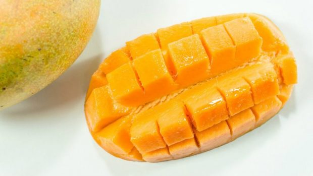 como cultivar mango