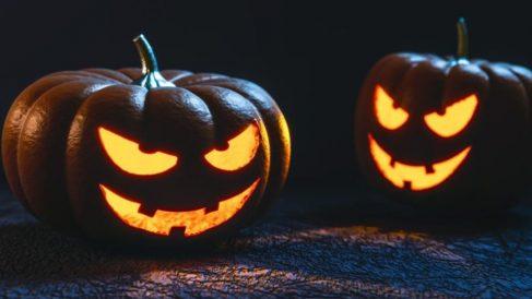 Curiosidades de la Calabaza: ¡Feliz Halloween!