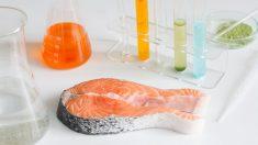 ¿En qué consiste el mercurio del pescado?