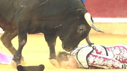 Mariano Viña en el suelo en el momento de sufrir la cogida (Foto: EFE).