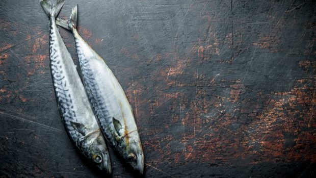 Mal olor a pescado en tu cocina