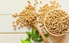 Pasos para hacer crecer brotes de soja en casa