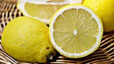 Cultivar tus propios limones en casa es muy sencillo